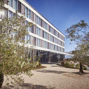 http://moderntimes-hotel.ch/application/files/thumbnails/thumb_list_2x/9314/5855/7653/jardin_olivier.jpg